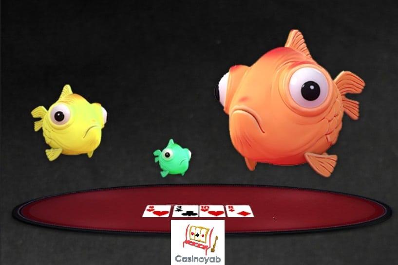 فیش یا ماهی در پوکر یا همان بازیکنان ضعیف یا آماتور